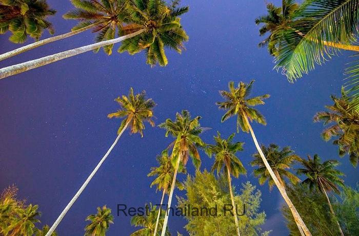 ночное небо остров Ко-Куд