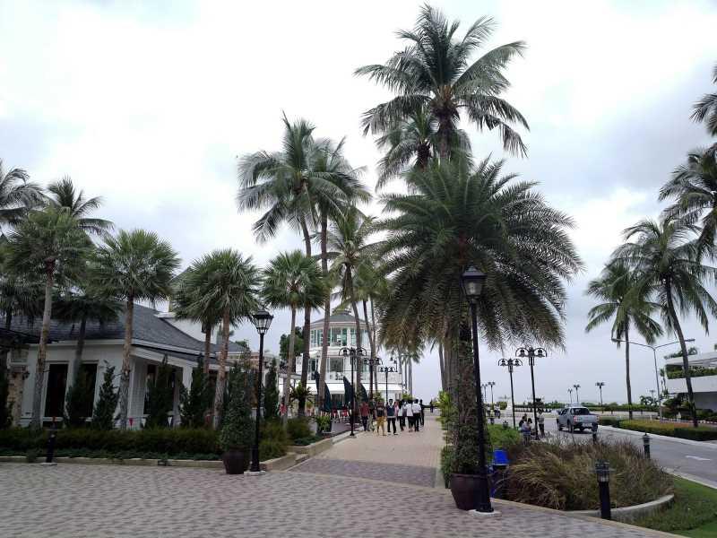 территория отеля амбассадор