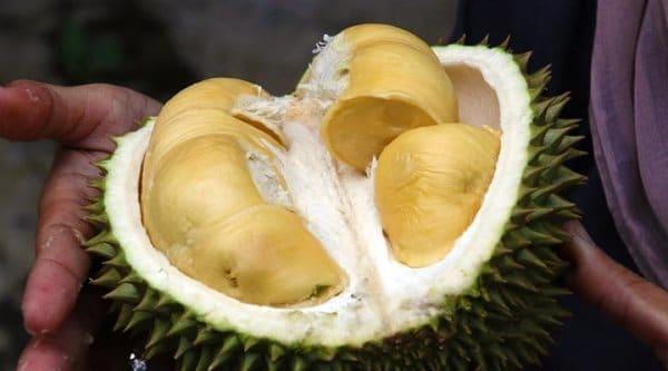 Дуриан - вонючий фрукт в Тайланде