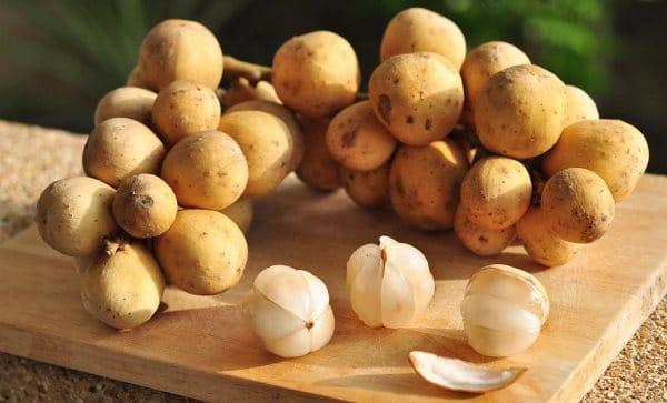 Лангсат, фрукт Тайланда