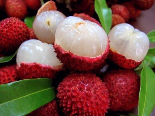 Личи, фрукт Тайланда
