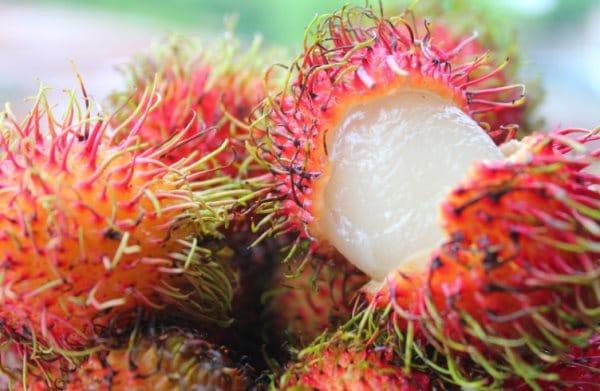 Рамбутан Волосатый фрукт