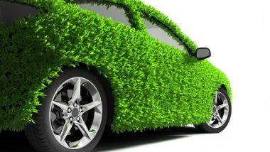 Грин карта– страховой полис для автомобиля