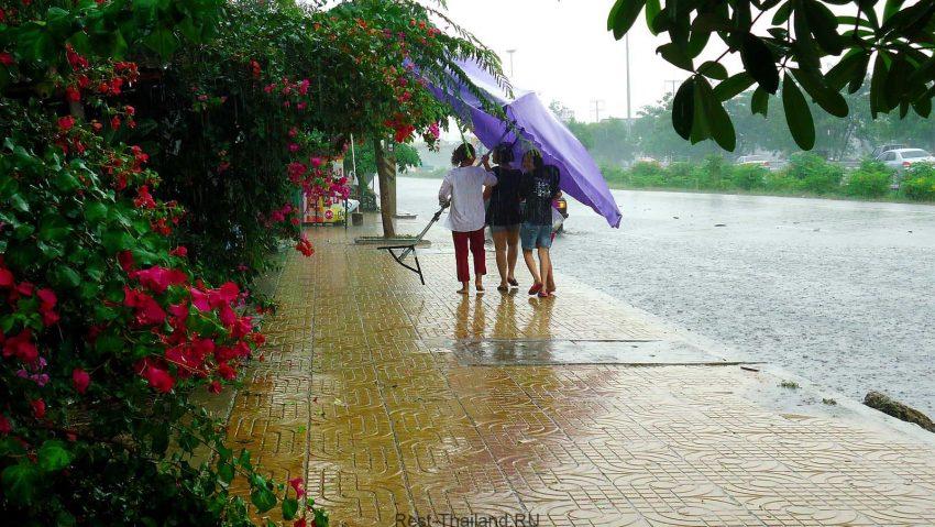 сезон дождей в таиланде по месяцам