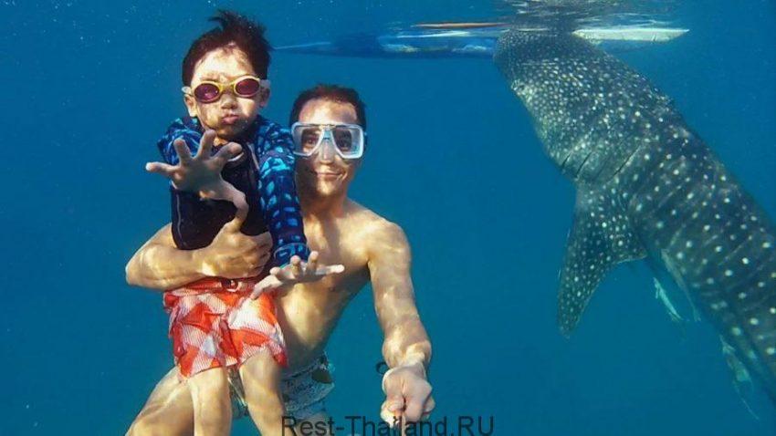 Острова Пхи Пхи - обзор, экскурсии, пляж Ди Каприо