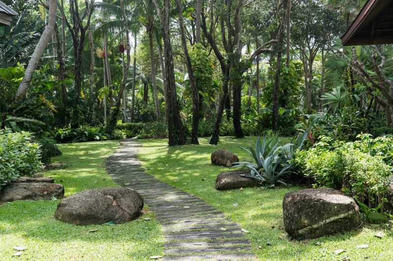 Флора в ботаническом саду на Пхукете