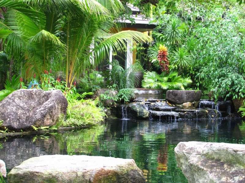 Озеро в ботаническом саду на Пхукете