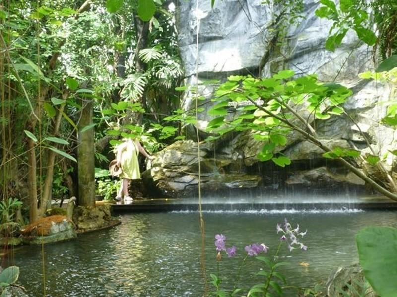 Озеро в ботаническом саду (Пхукет)