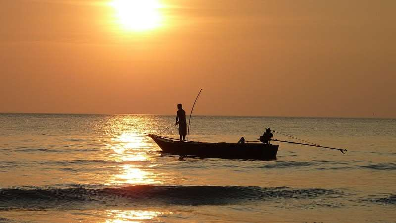 Таиланд январь, ловля рыбы