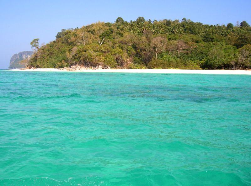 Бамбуковый остров